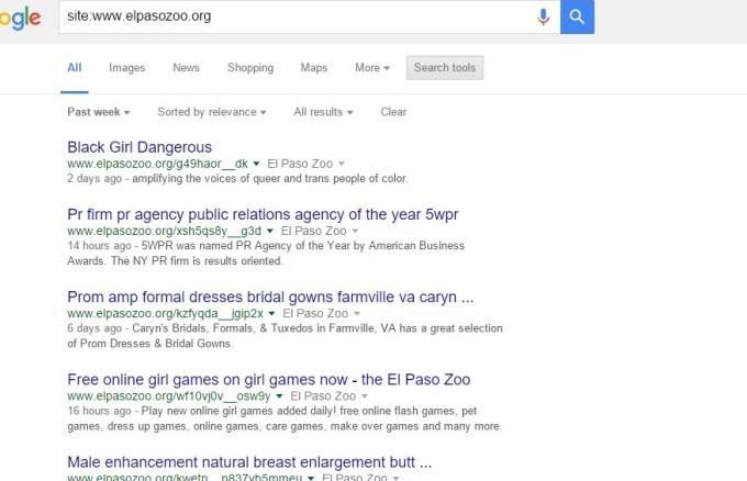 googe query